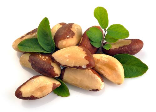 selén, paraorechy, imunita, brazílske orechy