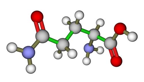 aminokyselina, bielkoviny, strukoviny, mlieko