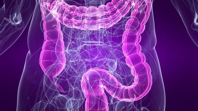 Dráždivé hrubé črevo, SDHČ, IBS, hnačka, zápcha, nafukovanie, nadúvanie, trávenie