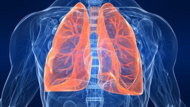 astma, priedušky, pľúca, cysty, dýchací, tráviaci systém, hlien, zápal
